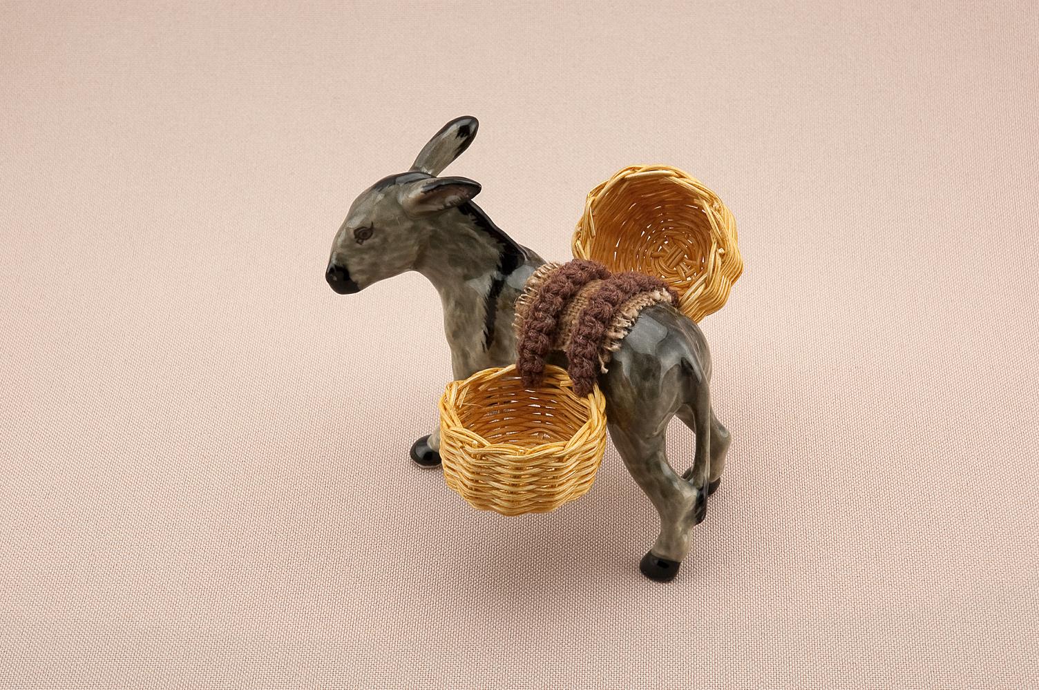Donkey_evo